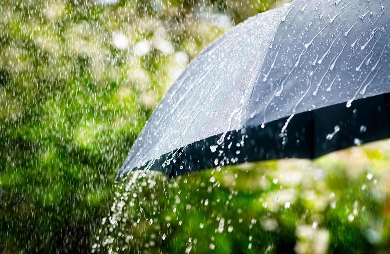 Detailaufnahme eines schwarzen Regenschirms, auf den der Regen prasselt. Im Hintergrund sind Umrisse eines Gartens zu sehen.
