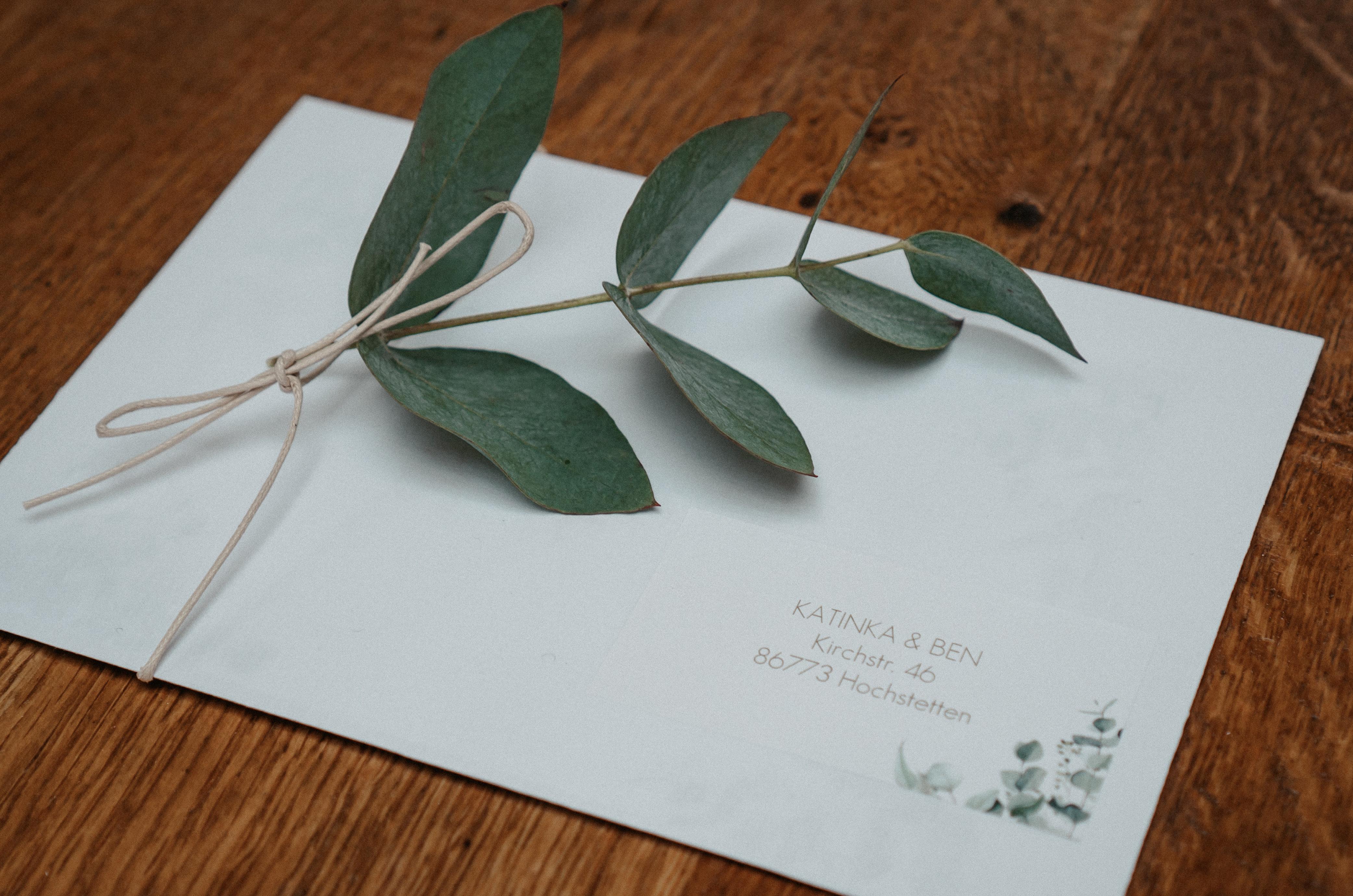 """Umschlag für die Hochzeitseinladung mit Aufkleber im Design """"Soft Greenery"""" mit Eukalyptus-Zweig."""