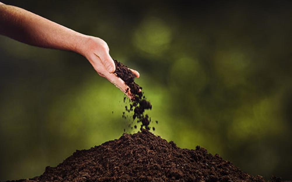 Hand wirft Erde auf Grab