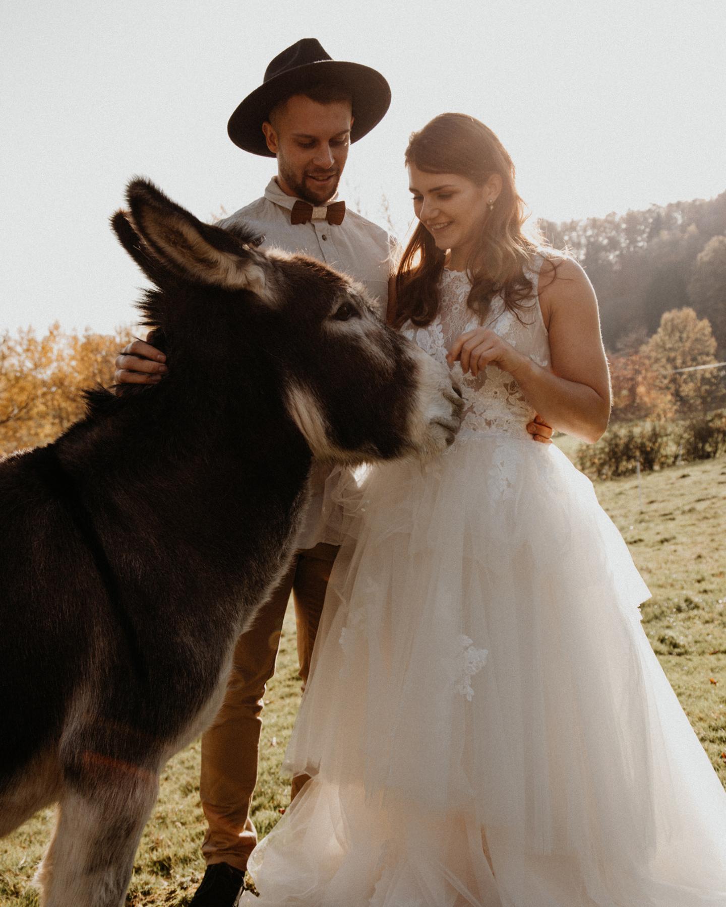 Boho Brautpaar streichelt Esel bei Fotoshooting